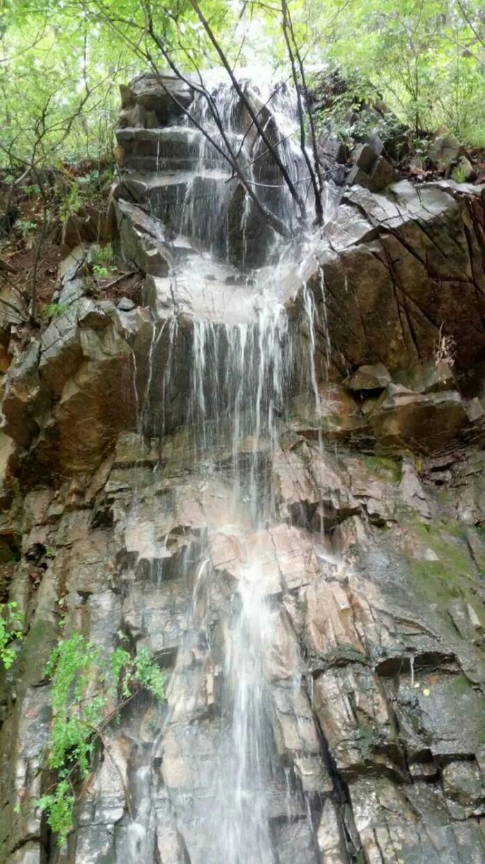 天津九龙山国家森林公园的评价 天津九龙山国家森林的